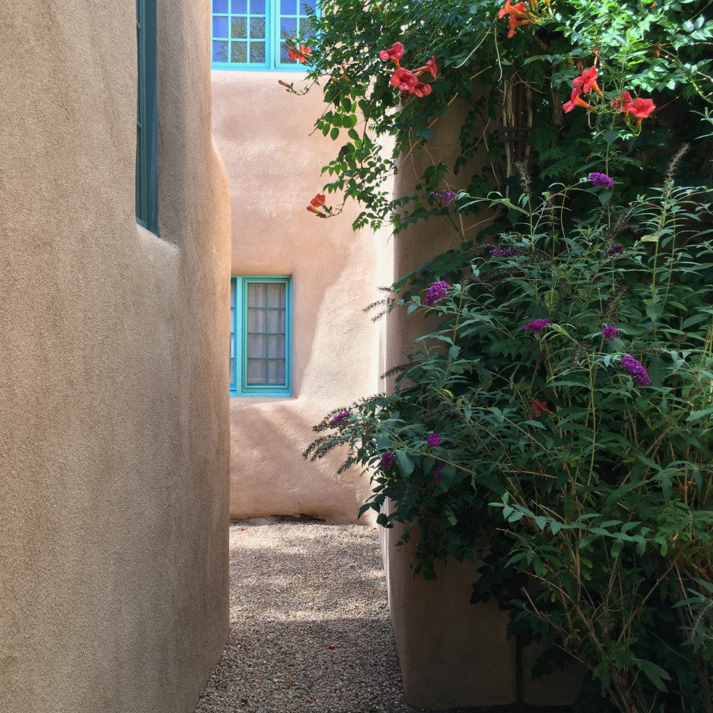 Adobe home and flowers